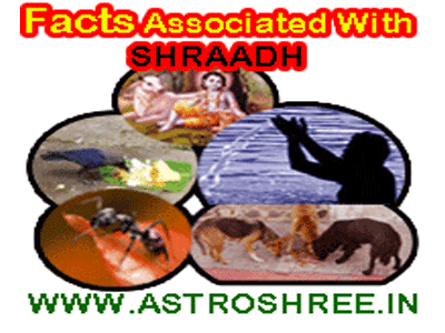 facts of shradha