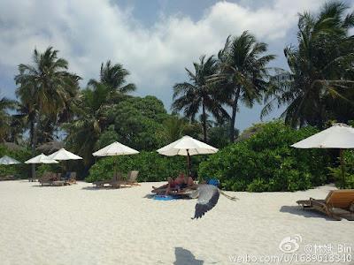 Ini dia hasil foto kamera Xiaomi Mi5