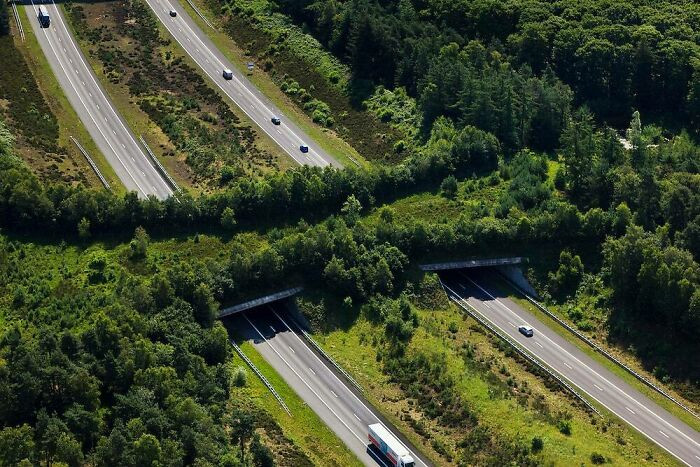 A1 Highway Ecoduct, The Veluwe, Netherlands
