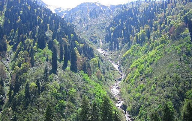 Doğa Karadeniz