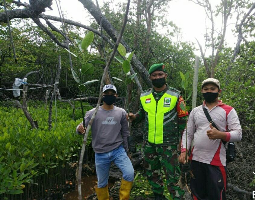 Babinsa Kelurahan Bandarsyah Lakukan Komsos Dengan Warga Penyedia Bibi Mangrove