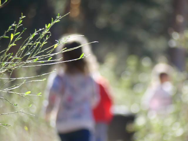 Niños desenfocados caminando en e campo