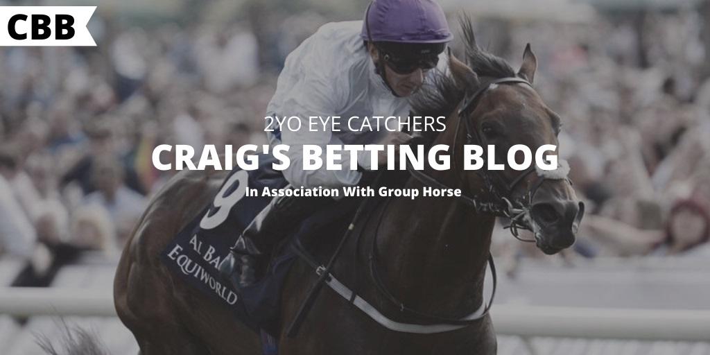 horse race betting blogger