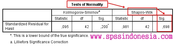 Test of Normality SPSS Output