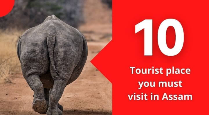 Tourist place you must visit in Assam