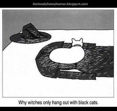 Why witches only hang out with black cats funny
