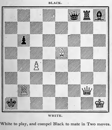 Problems in Chess  PDF