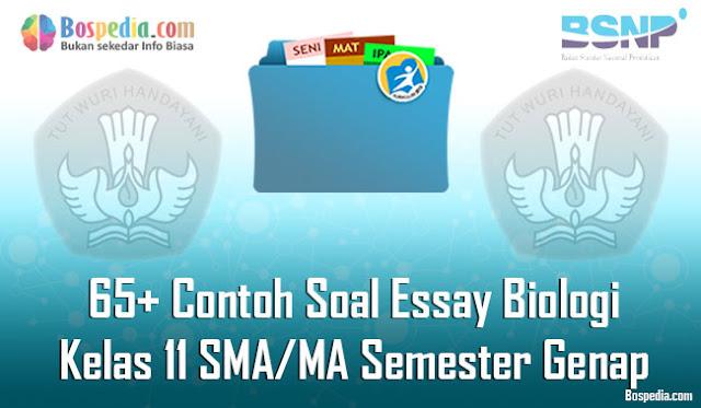 65+ Contoh Soal Essay Biologi Kelas 11 SMA/MA Semester Genap Terbaru