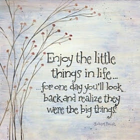 enjoy-the-little-things-quote