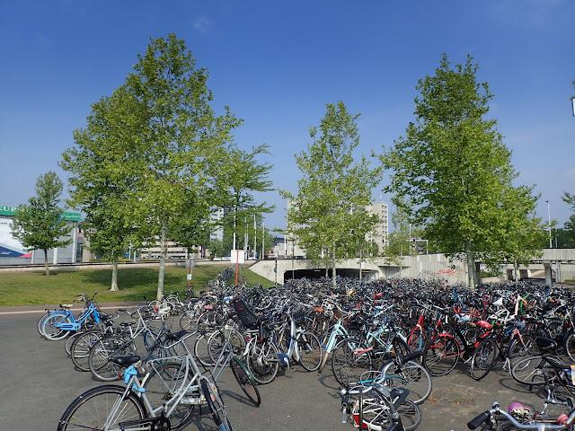 Holenderskie klimaty - pełno rowerów