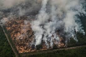 Makalah Pertangungjawaban Korporasi Dalam Tindak Pidana Kebakaran Hutan Dan Lahan Di Indonesia