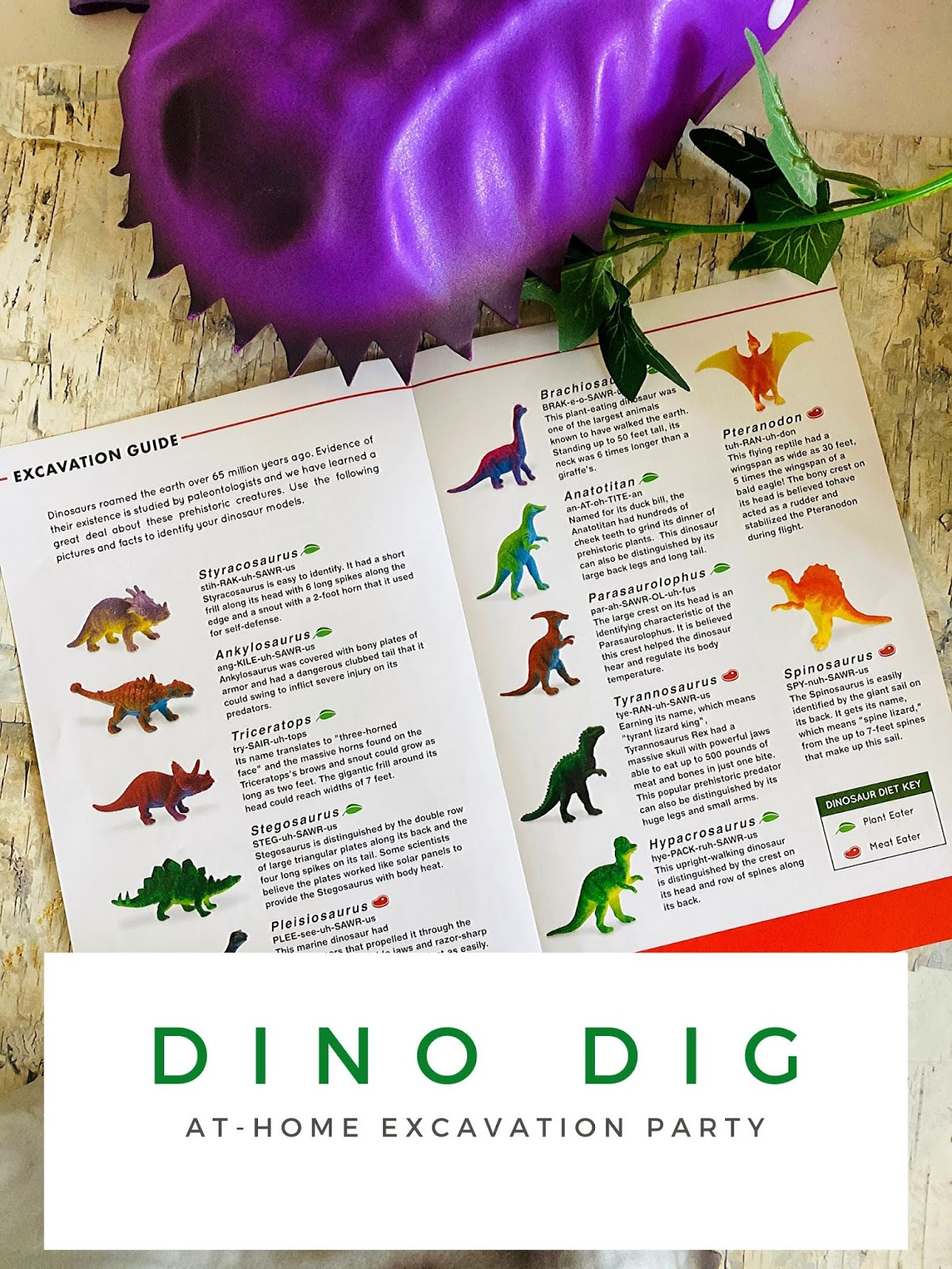 Dinosaur Themed Kids Party