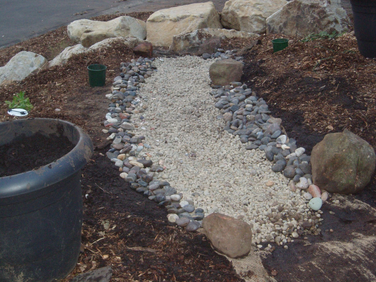 going native in the illawarra how to install a dry creek bed. Black Bedroom Furniture Sets. Home Design Ideas