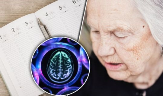 Early Vascular Dementia Symptoms: Difficulty Planning Could Be A Sign That You're At Risk
