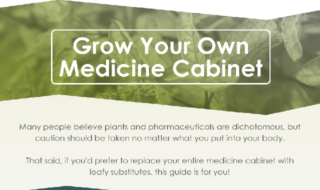 Grow Your Own Medicine Cabinet #infographic