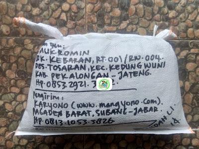 Benih padi yang dibeli   M. MUKROMIN Pekalongan, Jateng.  (Setelah packing karung ).