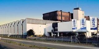 شركة ليوني عين السبع وظائف شاغرة في الكابلاج
