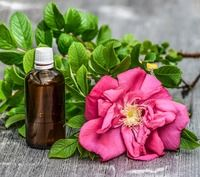 iYURA Reviews - Rose Oil