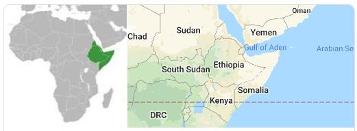 Horn of Africa horn