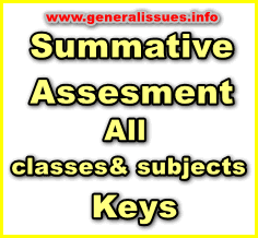 summative-assesment