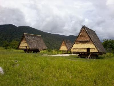 Rumah Adat Tambi , Rumah Adat Sulawesi Tengah