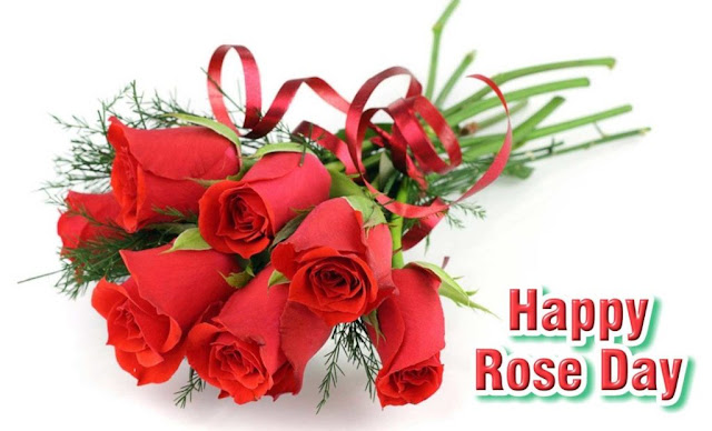 Beautiful Happy Rose Day Images