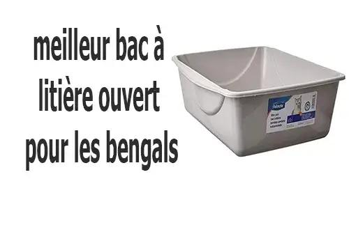 best open top litter box for bengals