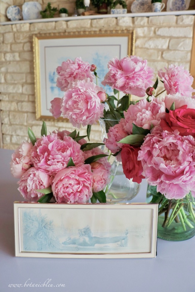 Romantic French country pink peonies with framed prints from France