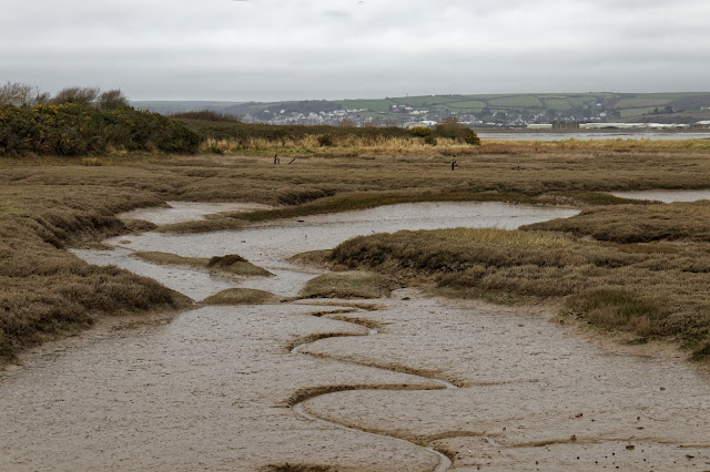 RSPB Isley Marsh, North Devon. Photo copyright Pat Adams