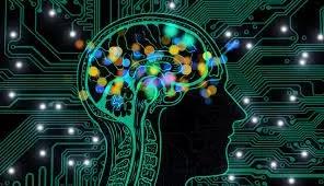 Sejarah dan Mitos Tentang Otak Manusia