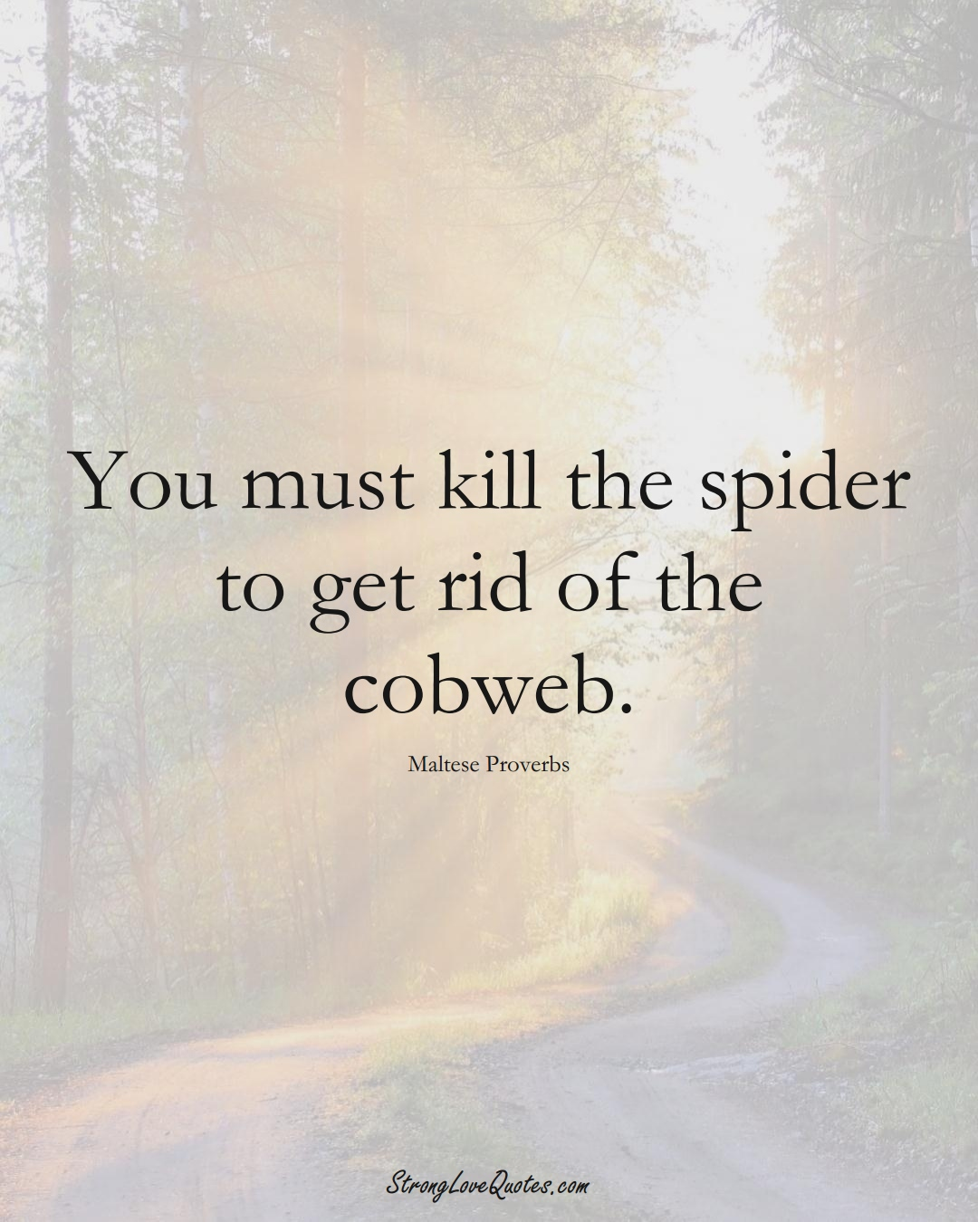 You must kill the spider to get rid of the cobweb. (Maltese Sayings);  #EuropeanSayings