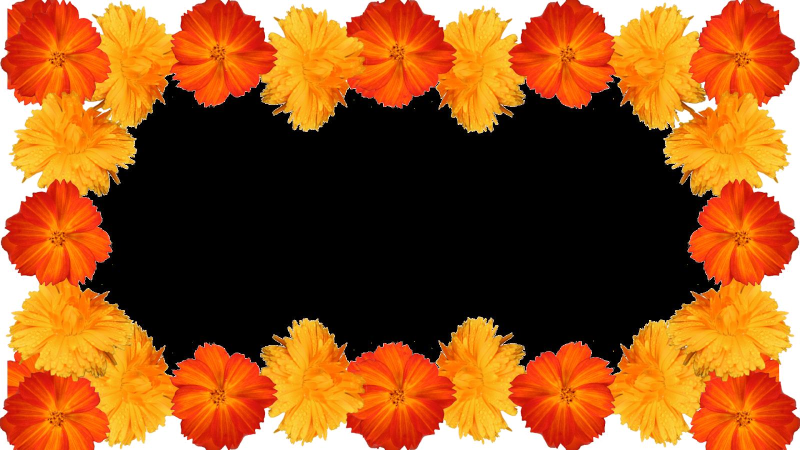 Super 13 Molduras de flores PH04