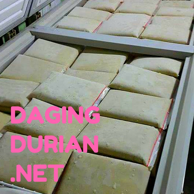 agen-daging-durian-medan-legit-di-banjarbaru