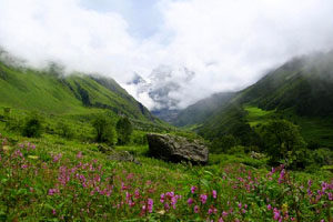 How to reach valley of flowers from auli