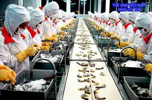 Cung cấp máy giặt sấy công nghiệp Tolkar cho công ty thủy sản tại Bình Thuận