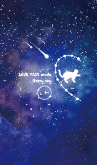 LOVE PAIR mode -Starry sky- [Boy] ver.1