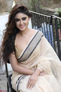 Sony Charishta in Brown saree Cute Beauty   IMG 3620 1600x1067.JPG