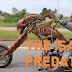 EXCLUSIVE INTERVIEW WITH THE PREDATOR OF MUKDAHAN (VIDEO)