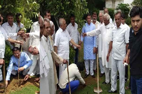 tigaon-bjp-leader-rajesh-nagar-plantation-and-distribute-plants-news