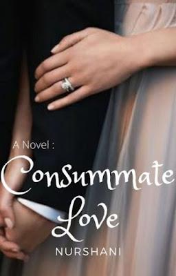 Consummate Love by NurShani Pdf