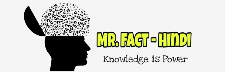 Mr. Fact - Hindi | Knowledge is Power
