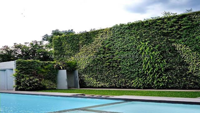 taman vertikal sidoarjo, tukang taman vertical garden sidoarjo, tukang taman vertikal sidoarjo, jasa vertical garden sidoarjo, vertical garden sidoarjo