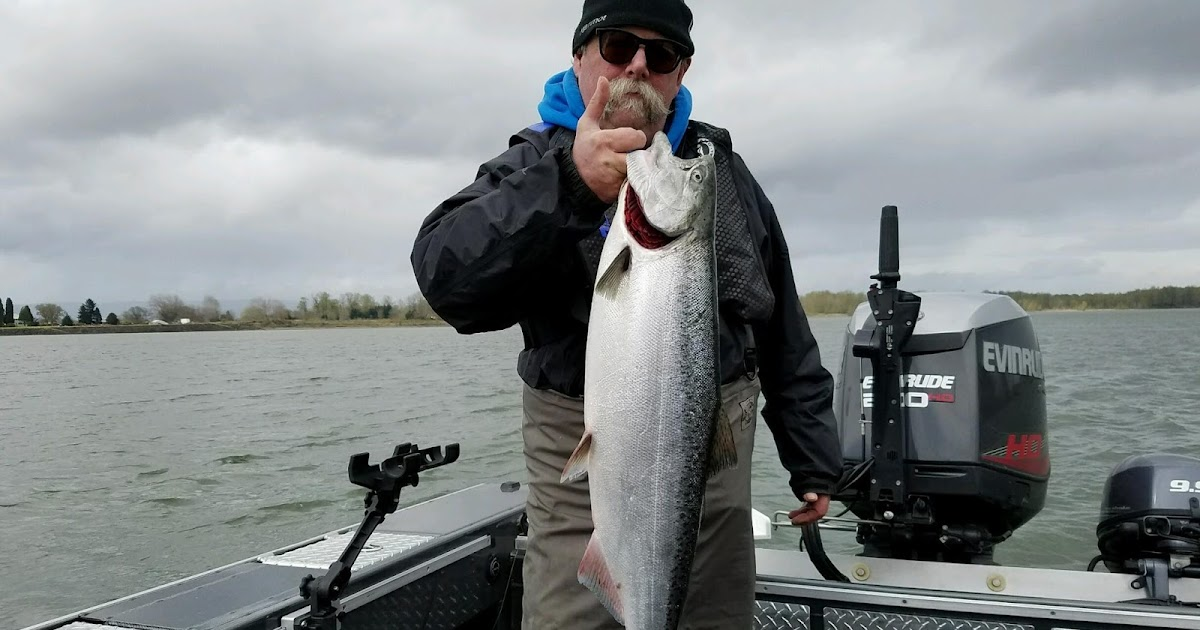 Saving fish from drowning columbia river spring king for Columbia river salmon fishing