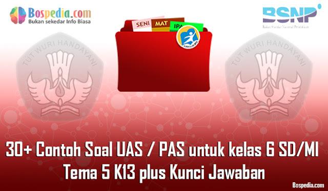 30+ Contoh Soal UAS / PAS untuk kelas 6 SD/MI Tema 5 K13 plus Kunci Jawaban