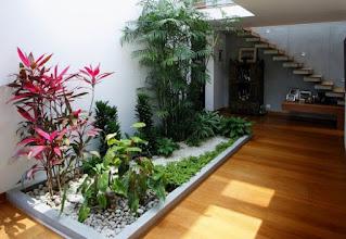 Manfaat Taman yang Berada Di Dalam Rumah
