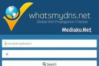 Cara Menggunakan WhatsMyDNS