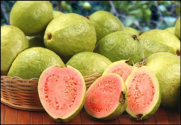 تفسير رؤية الجوافة في المنام للعصيمي 2020 أحلى وصفة