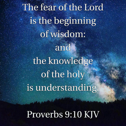 Word4today daily bible verse gain wisdom knowledge and understanding through fear of god and knowledge of god we can have the wisdom and understanding they are also gifts of holy spirit negle Images