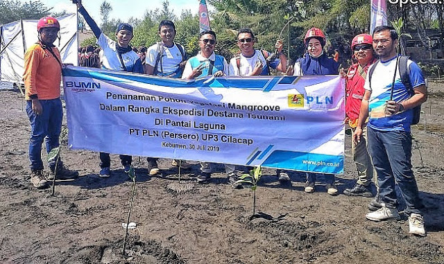PLN ULP Kebumen Bantu 500 Bibit Mangrove