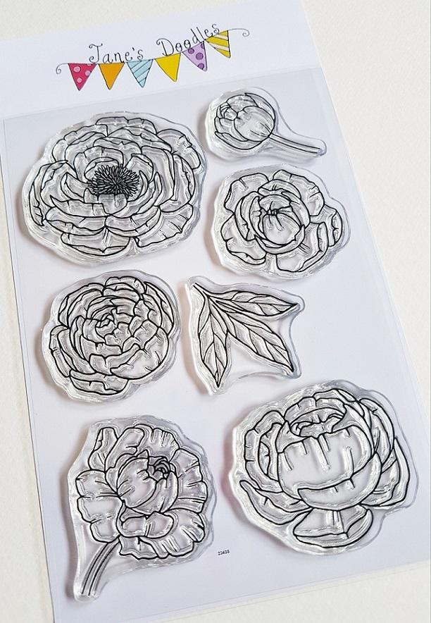 Jane's doodles - PEONY
